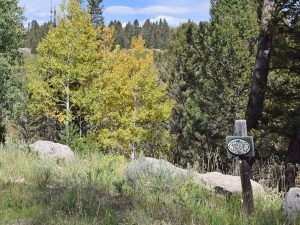 469 Ute Dr Cimarron, Colorado - Land for sale Atha Team Real Estate