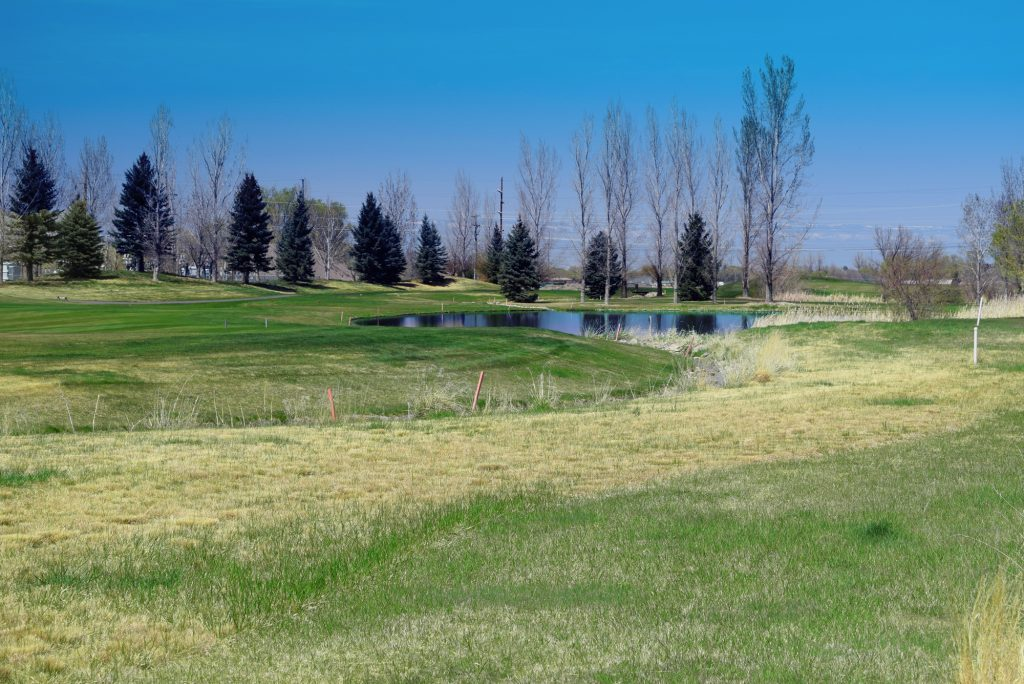 Land Property for Sale 551 Cobble Dr, Montrose, CO 81403 Atha Team Real Estate Colorado