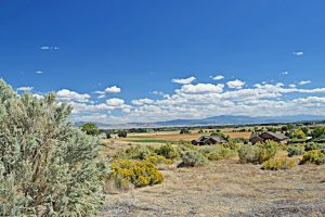59275 (Lot 17) Lone Eagle Rd Montrose Colorado Lot for Sale Mountain Views - Atha Team