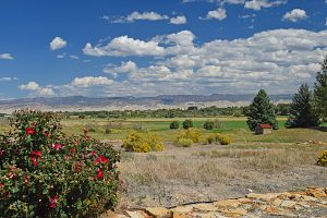 59388 (Lot 1) Lone Eagle Rd Montrose, Colorado Lot for Sale with Mountain Views - Atha Team