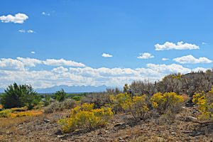 59425 (Lot 11) Lone Eagle Rd Montrose, Colorado Lot for Sale - Atha Team Real Estate