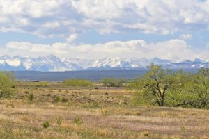 Lot 5 Hawthorne Ln Montrose CO 81403 Land for Sale with Mountain Views - Atha Team Real Estate