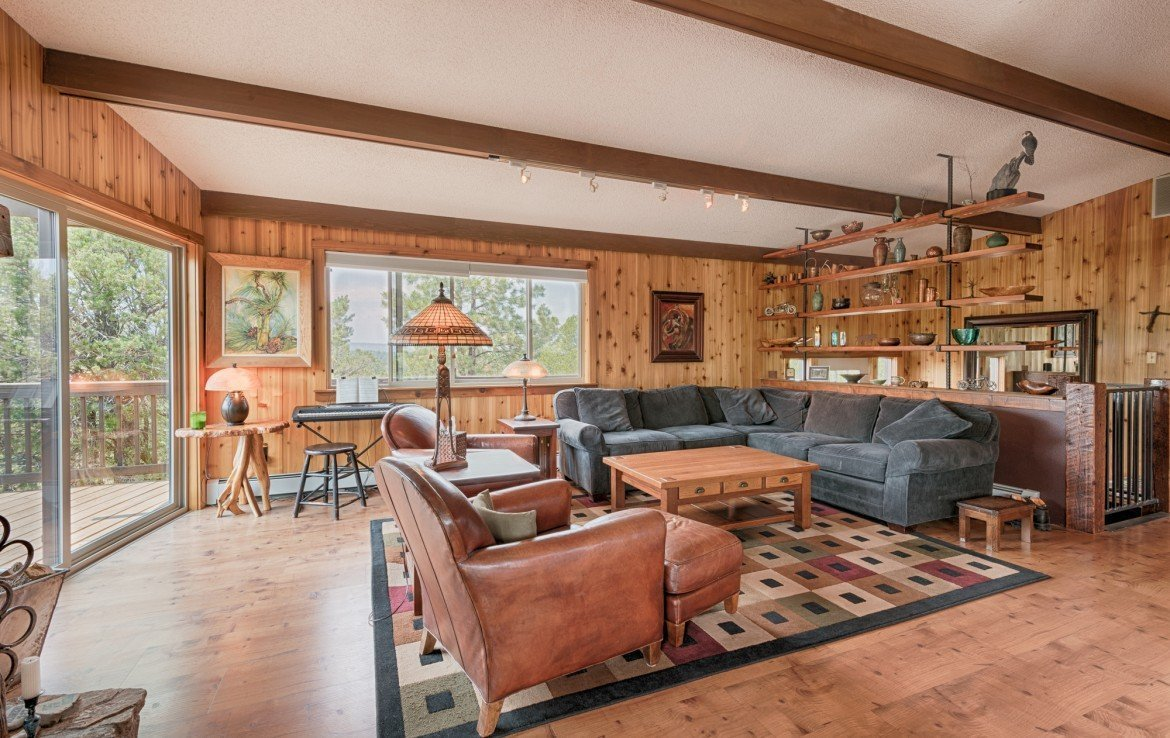 112 Lupine Ln Ridgway Colorado Home for Sale with 2 Acres and Garage - Living Room - Atha Team Realtor