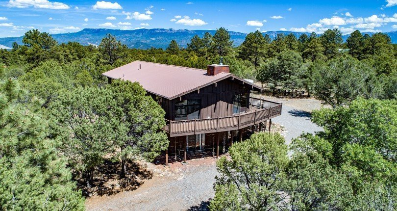 112 Lupine Ln Ridgway Colorado Home for Sale with 2 Acres and Garage - Aerial View - Atha Team Realtor