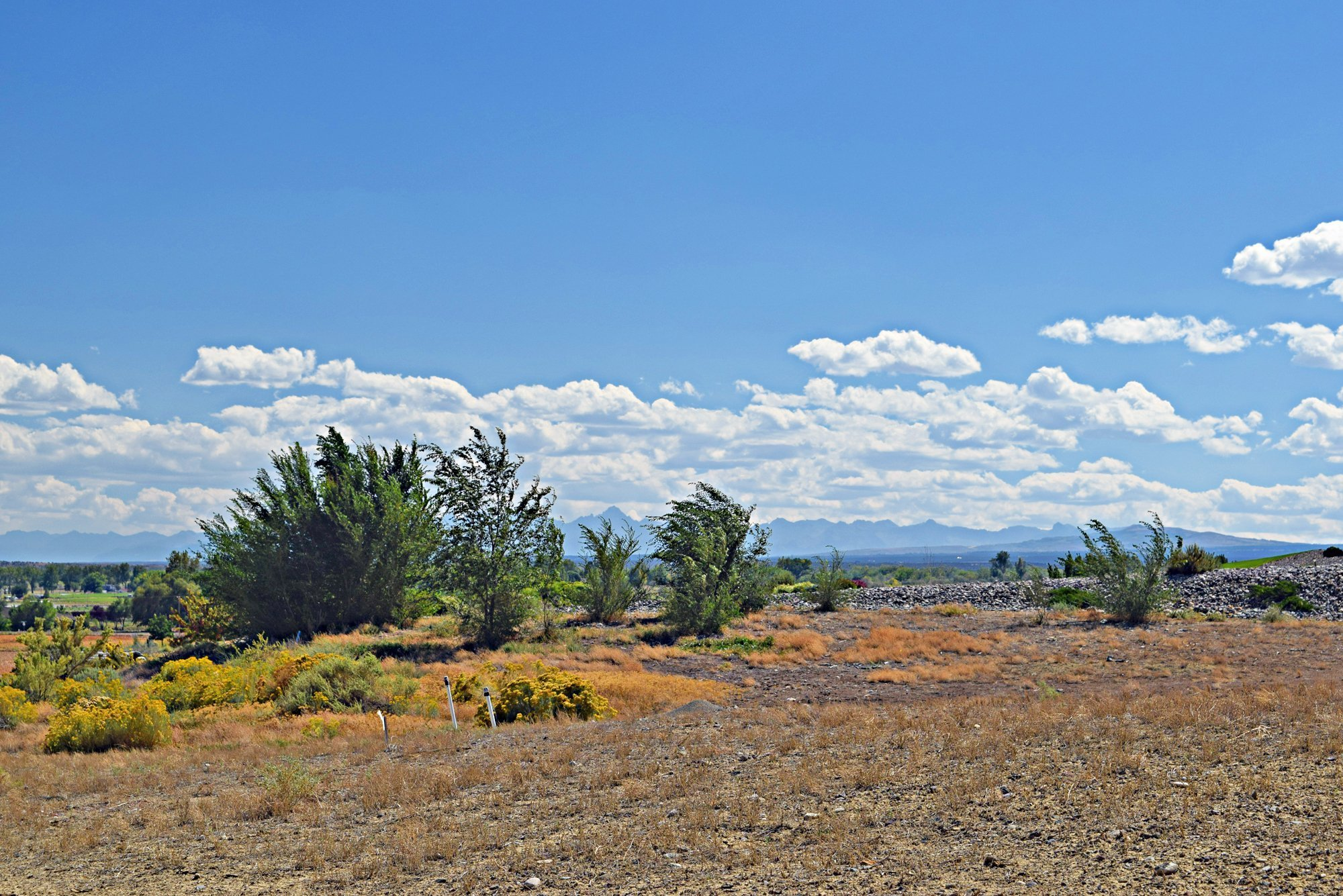 59407 (Lot 12) Lone Eagle Rd Montrose, CO 81403 - Lot for Sale Ready to Build - Atha Team Real Estate