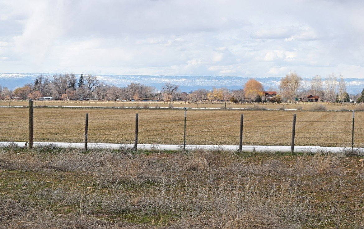 3 Cleared Acres for Sale Partially Fenced - Lot 3 Oleander Circle Montrose, CO 81403