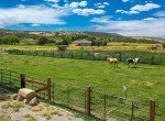 Equestrian Setup on 2 Irrigated Acres - 21561 Government Springs Rd Montrose, CO - Atha Team Realty