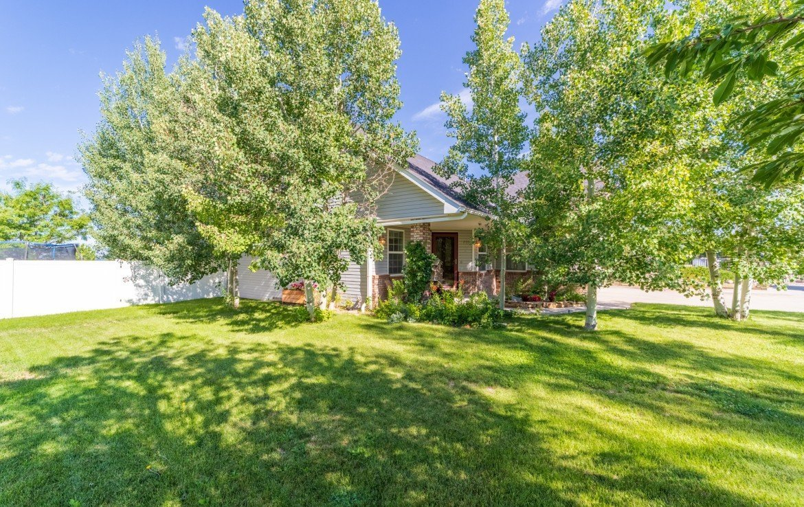 Large Front Yard with Mature Trees - 3208 Silver Fox Dr Montrose CO 81401 - Atha Team at Keller Williams
