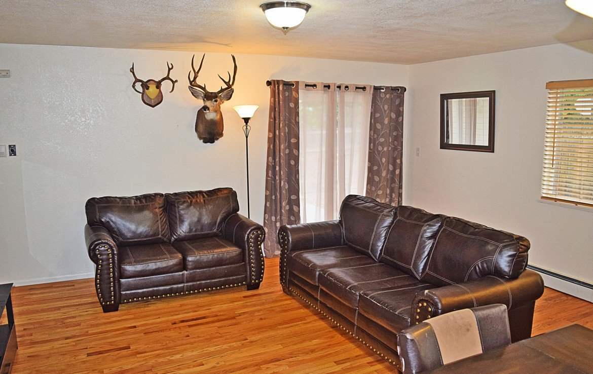 Living Room with Wood Laminate Flooring - 1141 Anthracite Creek Ave Montrose CO 81401 - Atha Team Real Estate