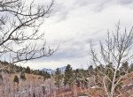 Ridgway Lot with Mountain Views - Lot 22 Alpine Ln Ridgway, CO 81432 - Atha Team Realty