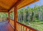 Porch Views of National Forest - 84 Columbine Trail Cimarron Colorado 81220 - Atha Team Realty
