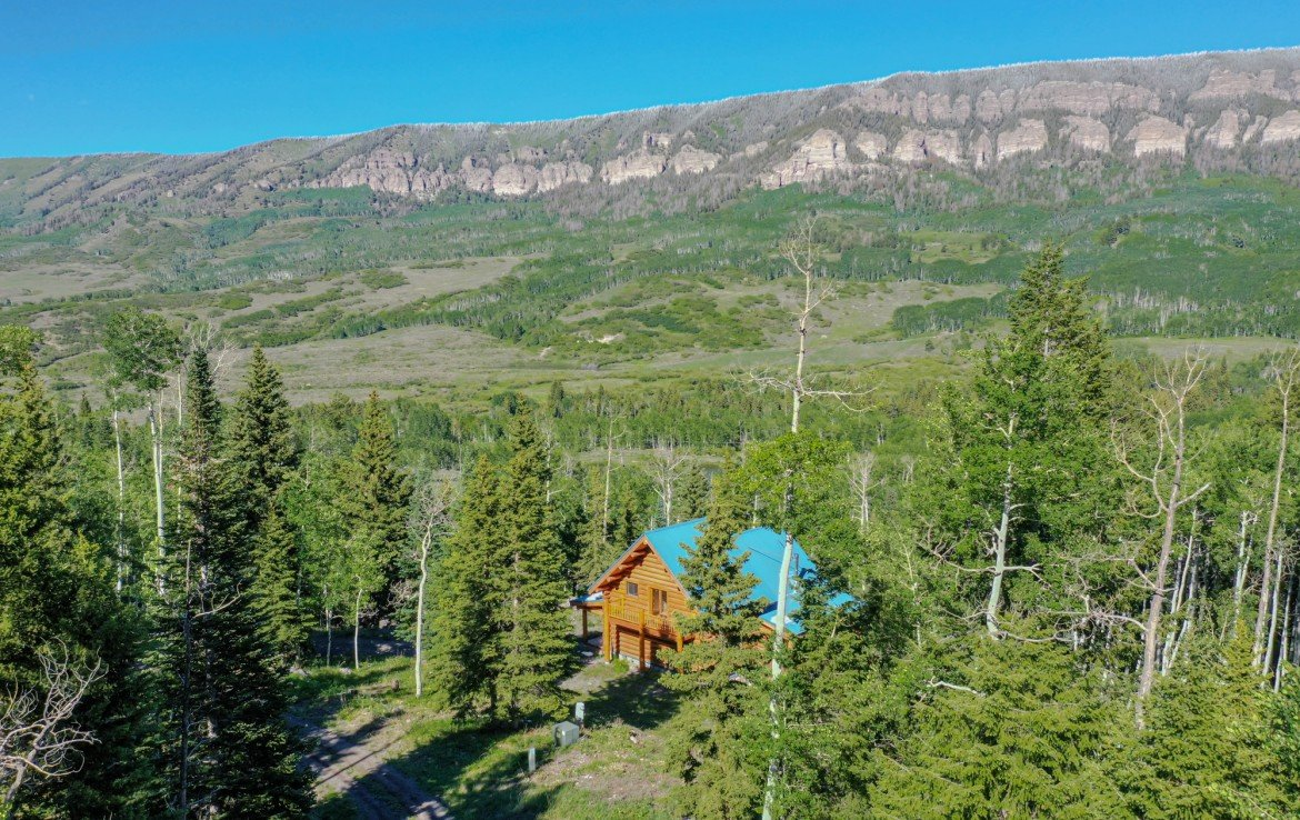 Aerial View of Cabin in the Woods - 84 Columbine Trail Cimarron Colorado 81220 - Atha Team Realty
