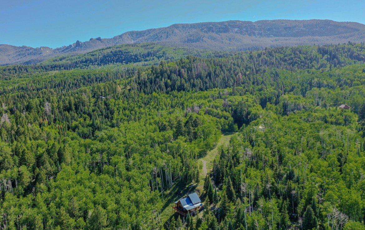 Aerial View of Cabin with Southern Mountain Views - 84 Columbine Trail Cimarron Colorado 81220 - Atha Team Realty