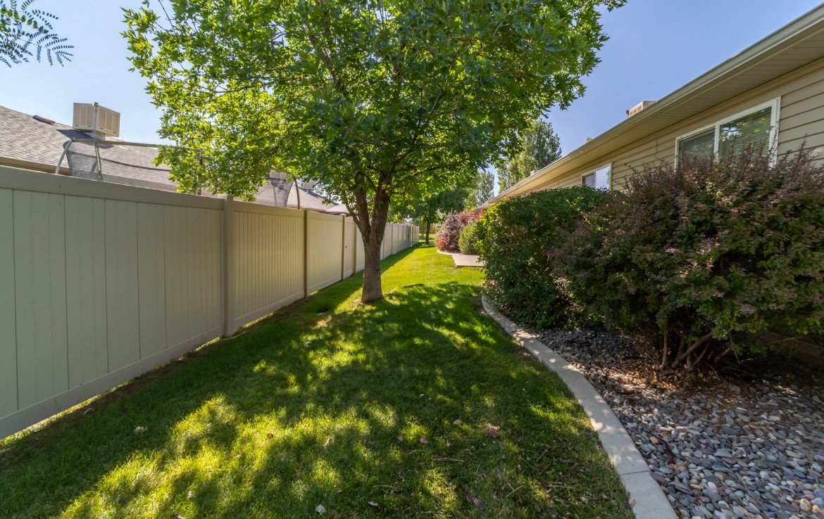 Back Yard Mature Trees - 1314 Bighorn St Montrose, CO 81401 - Atha Team Residential Real Estate