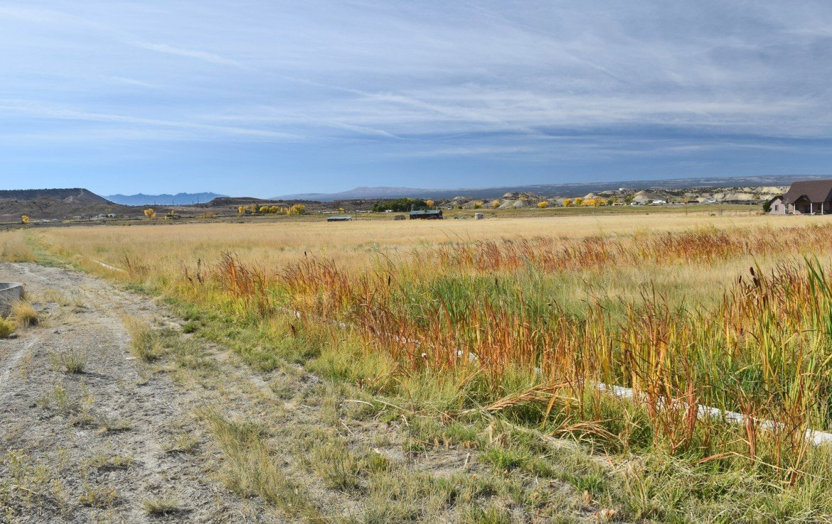 Irrigated Pasture Land - TBD Racine Rd Montrose, CO - Atha Team Residential Real Estate