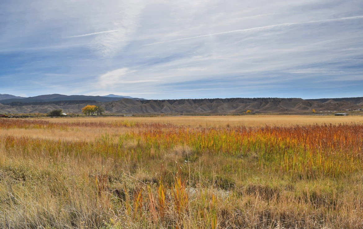 Montrose Acreage for Sale - TBD Racine Rd Montrose, CO - Atha Team Residential Real Estate