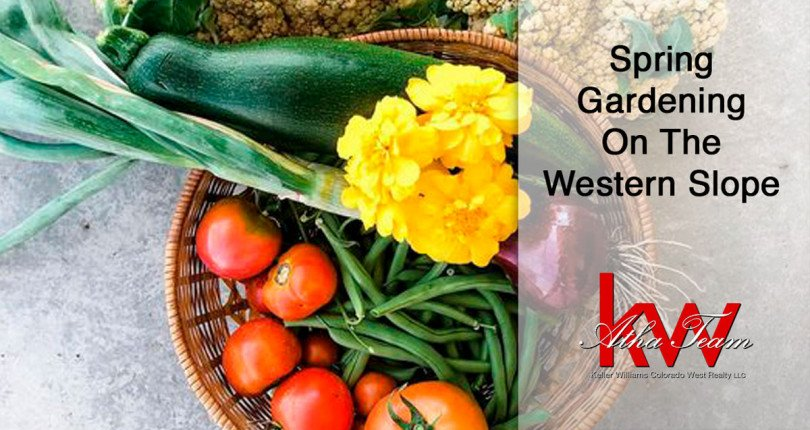 Spring Gardening on the Western Slope – Atha Team Blog