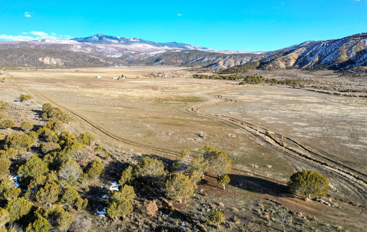 Private Country Location - TBD Buckhorn Rd Montrose, CO 81403 - Atha Team Real Estate Agents