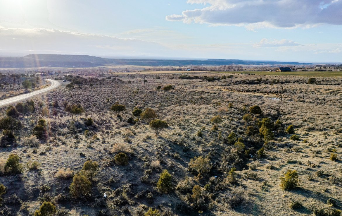 71 Acres for Sale - TBD Buckhorn Rd Montrose, CO 81403 - Atha Team Real Estate Agents