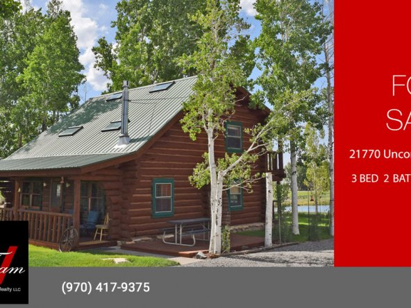 Country Cabin for Sale with Mountain Views - 21770 Uncompahgre Rd Montrose, CO 81403 - Atha Team Real Estate