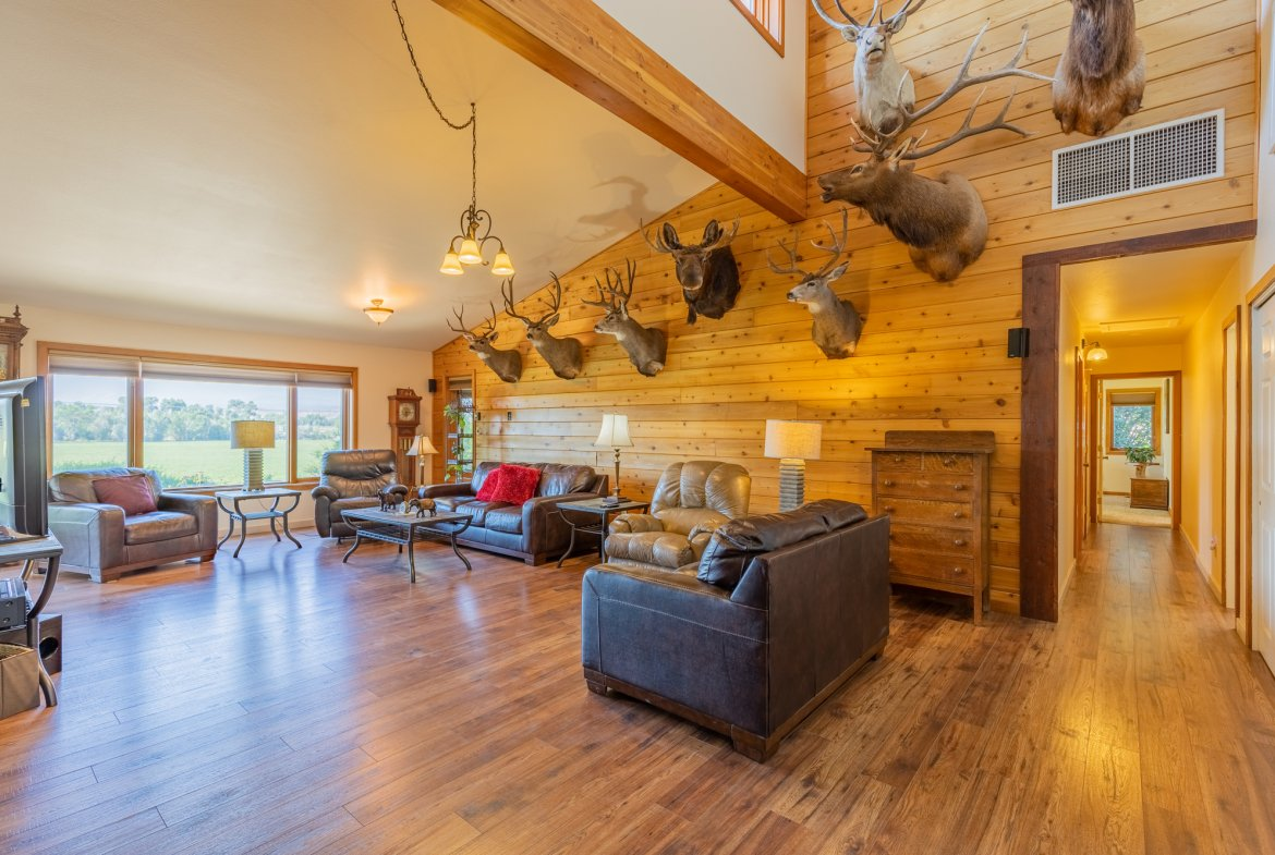 Living Room with Laminate Flooring - 17777 6650 Rd Montrose, CO 81403 - Atha Team Country Real Estate