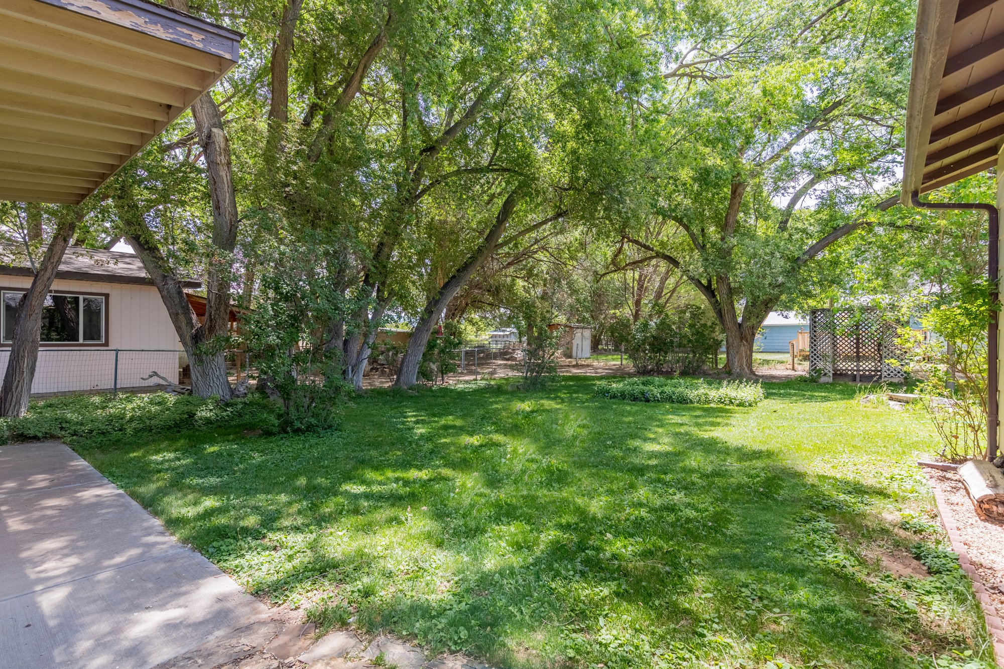 Back Yard with Mature Trees - 418 6400 Rd Montrose, CO 81403 - Atha Team Realty