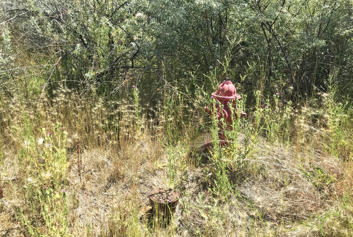 Fire Hydrant Near - Lot 3 5950 Rd Montrose, CO 81403 - Atha Team Land Real Estate
