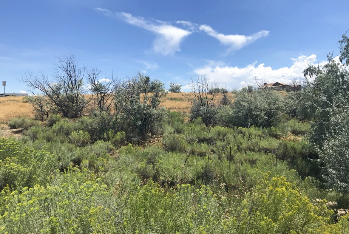 Large Lot for Sale - Lot 3 5950 Rd Montrose, CO 81403 - Atha Team Land Real Estate