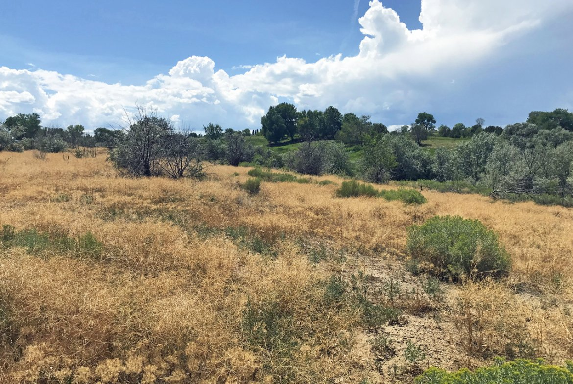 Gently Sloping Land for Sale - Lot 3 5950 Rd Montrose, CO 81403 - Atha Team Land Real Estate