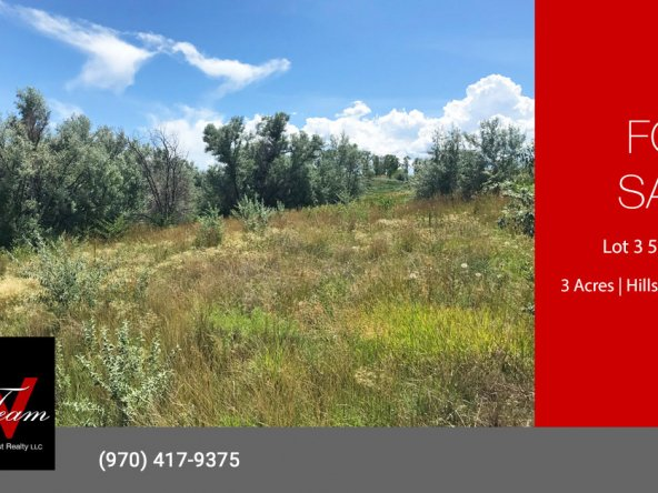 Irrigated Acreage for Sale - Lot 3 5950 Rd Montrose, CO 81403 - Atha Team Land Real Estate
